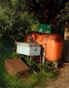 oranger Tank mit grünem Schüssel-Hut unter Olivenbaum