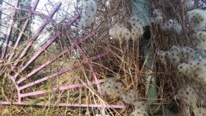 Rosanes viertelsternförmiges Gitter mit Puschelblumen